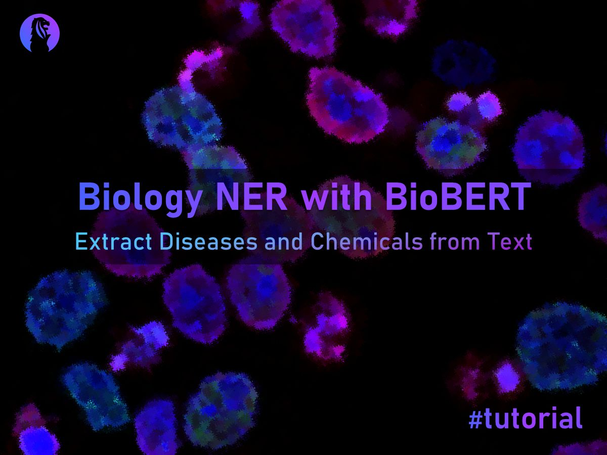 Biology NER with BioBERT to Extract Diseases and Chemicals.